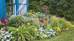 Ultimate Guide to Cabin and Cottage Gardens